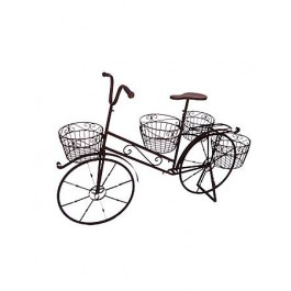 Bicicleta Média de Ferro